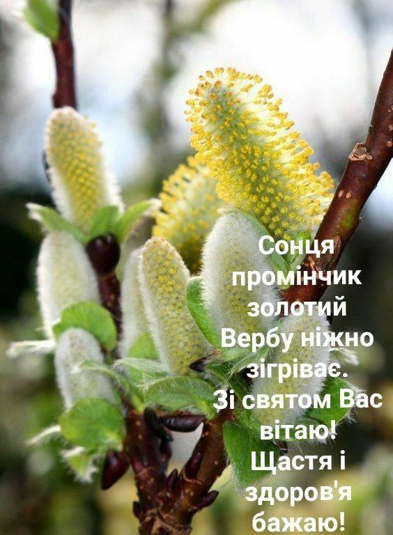 Короткі привітання з Вербною неділею у прозі, українською мовою